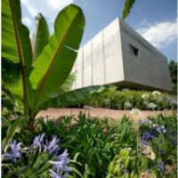 Jardín botánico de la biblióteca José Vasconcelos. Un espacio para disfrutar de una buena lectura con una increíble naturaleza alrededor. Foto:Vía twitter.com/CapitalMexico