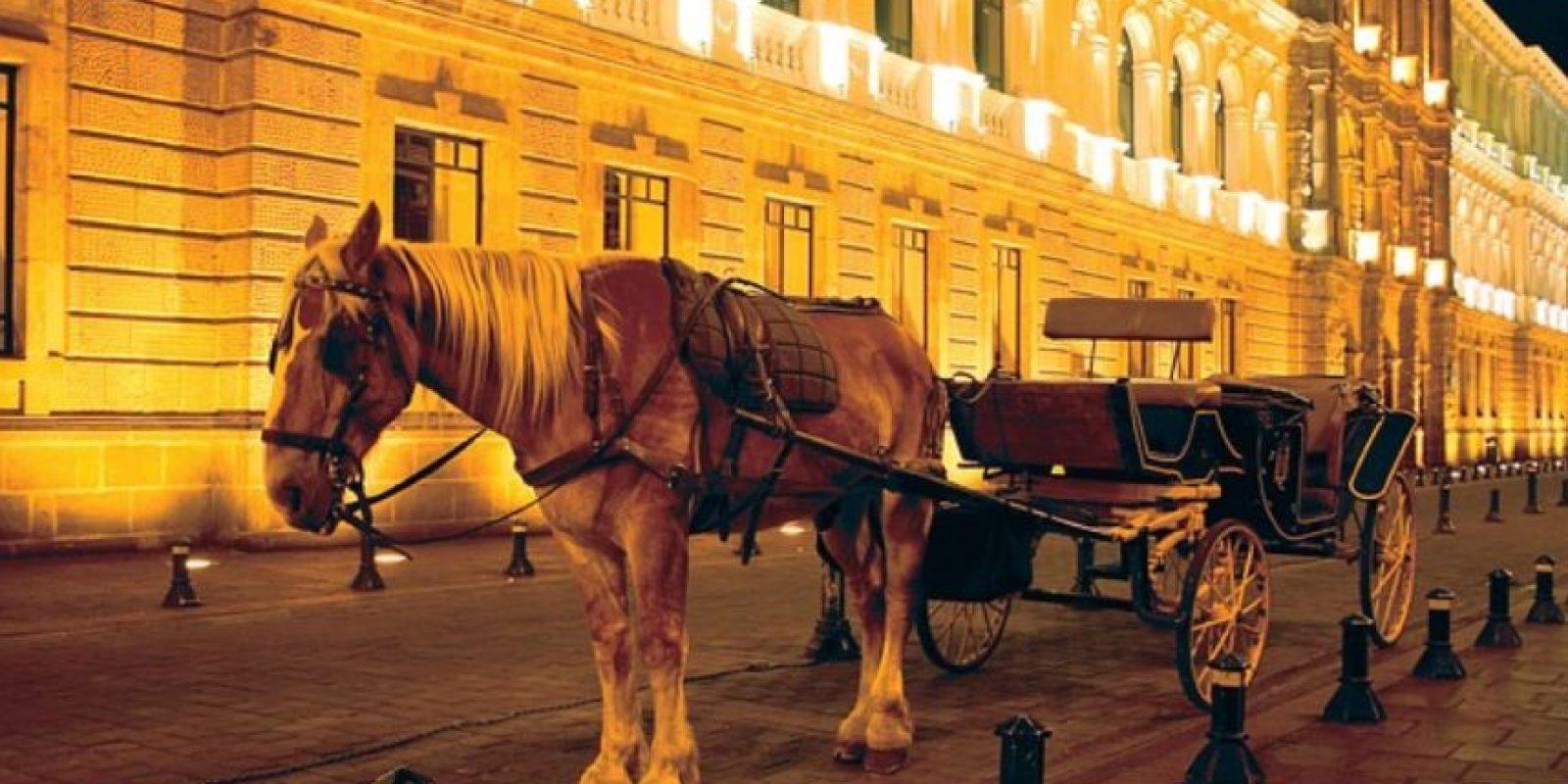 Para los que buscan una opción romántica y original existen paseos en carrozas jaladas por elegantes caballos que recorren el Centro Histórico partiendo desde el Pasaje Amador. Foto:Vía Pixabay