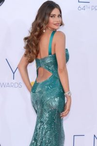 Sofía Vergara Foto: Getty Images
