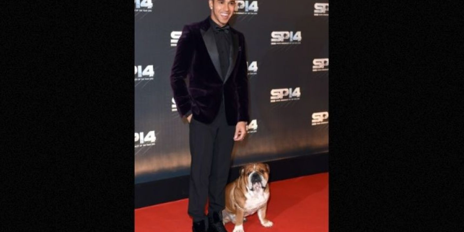 Lewis Hamilton Foto: Getty Images