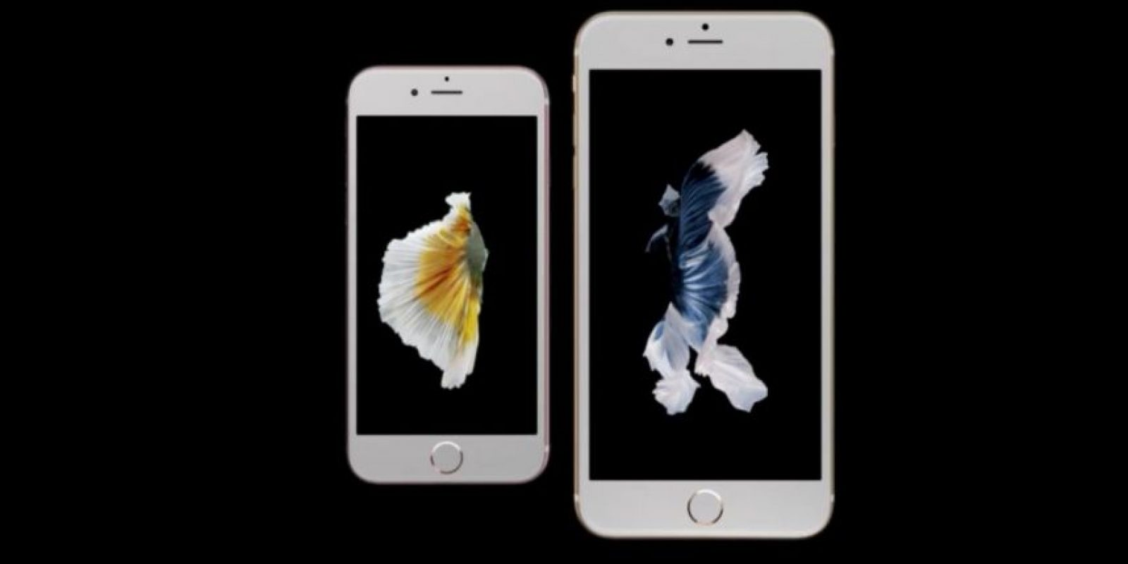 iPhone 6s y iPhone 6s Plus (2015). Foto: Apple