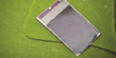 """Combustible de la luz solar. Investigadores dirigidos por el profesor Daniel Nocera, del Instituto de Tecnología de Massachusetts (MIT), han producido algo que se llama una """"hoja artificial"""". El dispositivo puede convertir la energía de la luz solar directamente en un biocombustible que puede ser almacenado y utilizado más adelante como fuente de energía. La """"hoja"""" ha abierto la posibilidad de utilizar la luz solar para crear combustible de hidrógeno, una posible alternativa a la gasolina."""