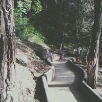 Inclusive el camino puede ser diferente. Foto:twitter.com/arnoldestuardo