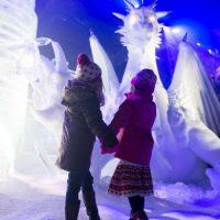 Existen diversos festivales donde se les puede admirar alrededor del mundo Foto:Getty Images
