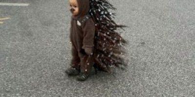 """¡Tenemos un ganador! Este niño """"rompió internet"""" con su disfraz de Halloween"""