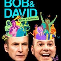 """""""W/David and Bob"""" – Temporada 1 disponible a partir del 13 de noviembre. Foto:vía Netflix"""