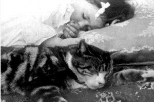 5- Dormir en un lugar silencioso. Foto:Pinterest