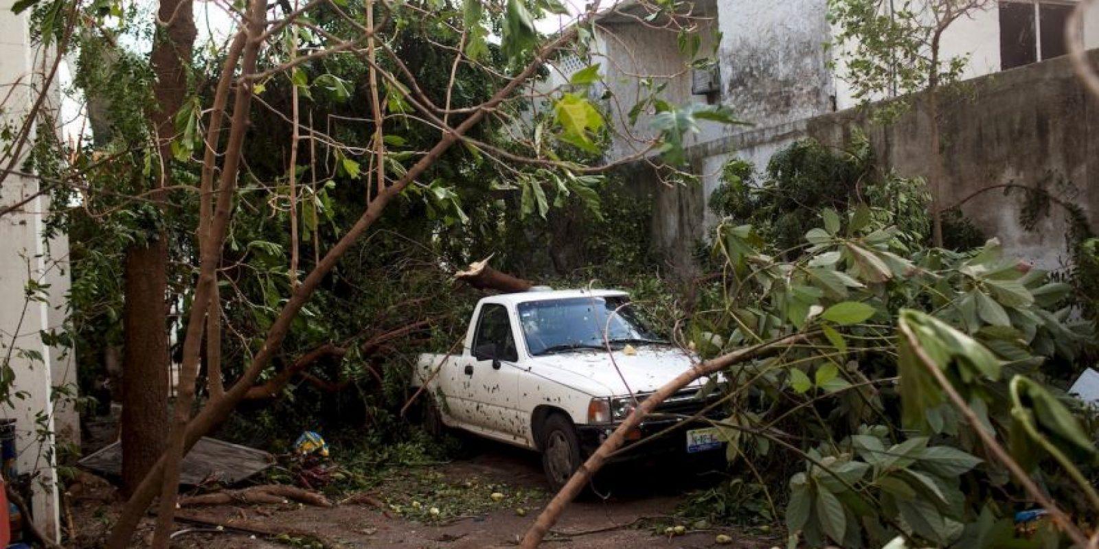 """De acuerdo al catedrático de la UNAM: """"Fenómeno natural no es igual a desastre"""" Foto:Getty Images"""