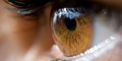 1. Ojos amarillos Foto:Pixabay