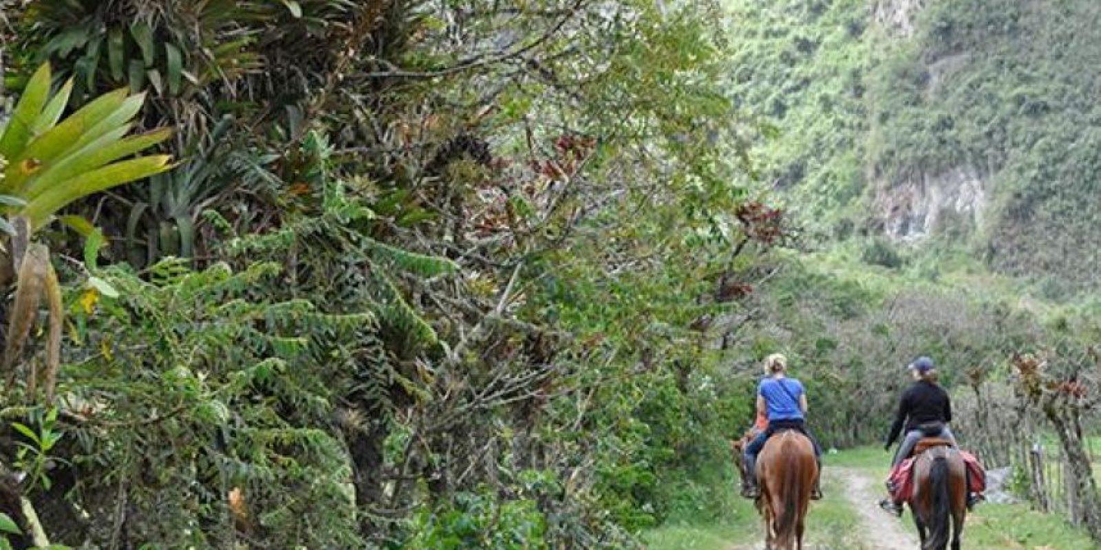 Pululahua es uno de los sitios más secretos de Ecuador a tan solo 17 kilómetros al norte de Quito, se encuentra en el interior y en las laderas del volcán con el mismo nombre. Foto:Vía quito.com.ec