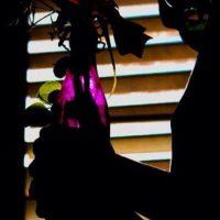 País: Puerto Rico / Categoría: Secretos de la Ciudad Foto:Gabriela