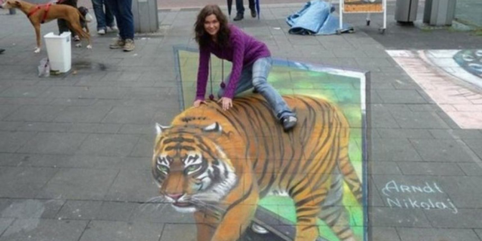Ella no está montada en un tigre. Foto:Imgur