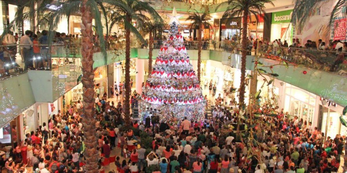 ¡La bienvenida de la verde Navidad!