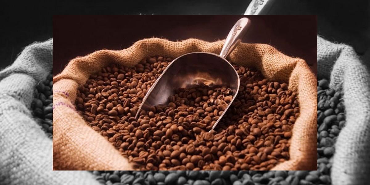 Se destinarán 16,800,000 euros para controlar la roya del café