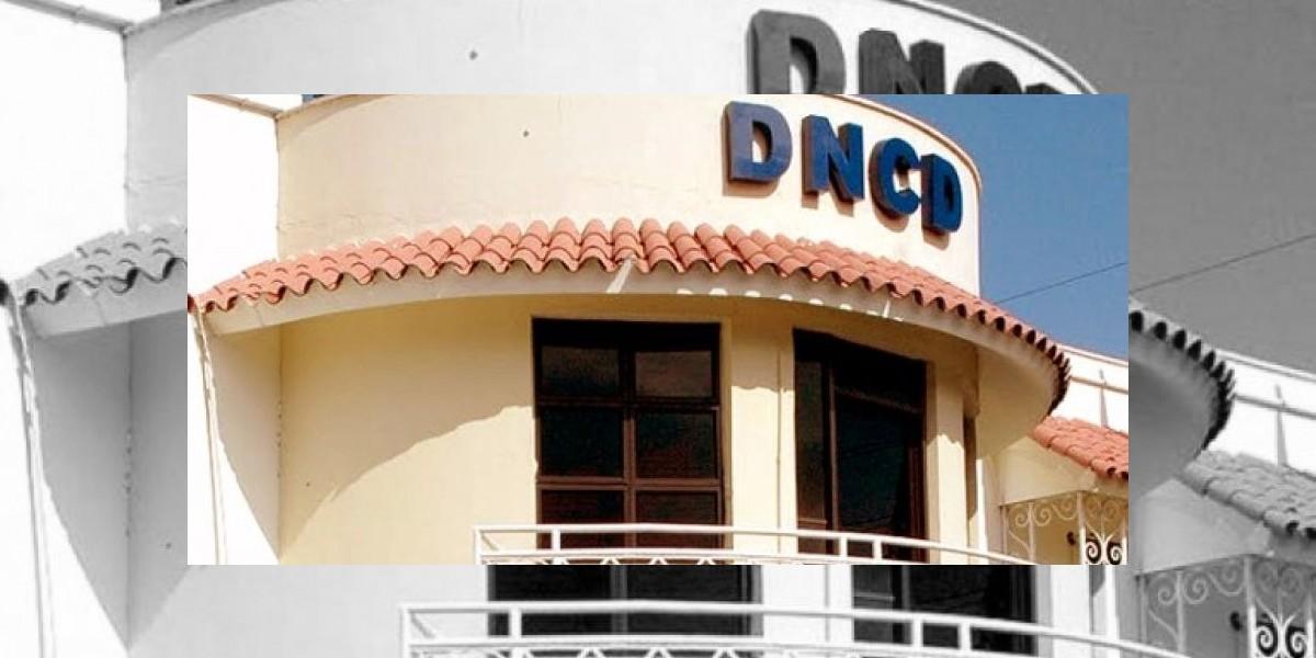 DNCD decomisa 100 libras de marihuana que entraron al país desde Haití