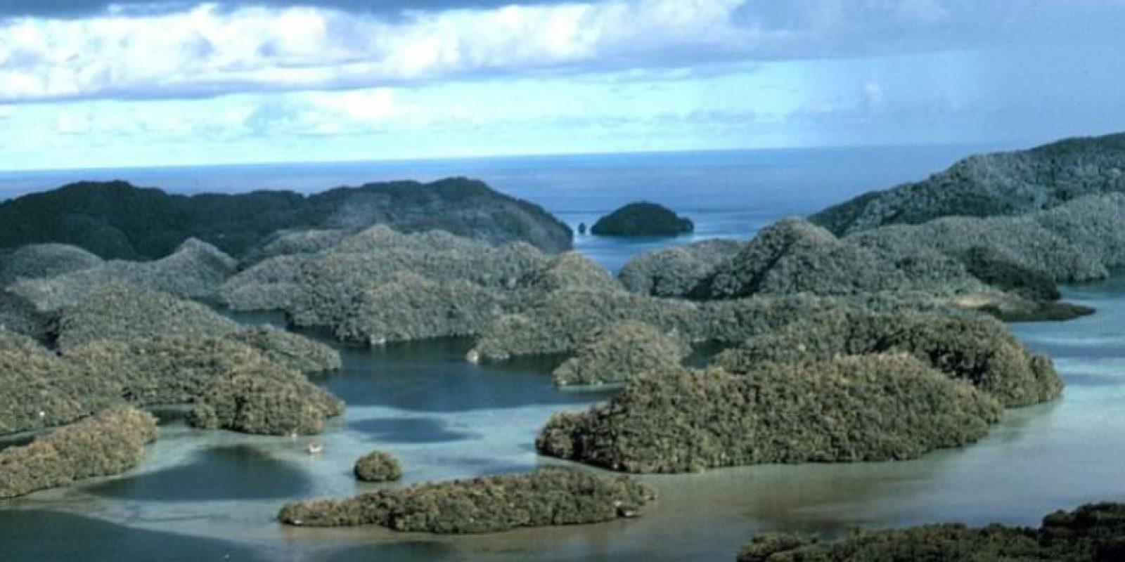 4. Palau Foto:Getty Images