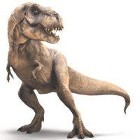 """Mundo jurásico. Sin duda, la corona de éxito de película de verano del 2015 fue para Mundo jurásico, que hasta ahora ha superado los US$1,6 mil millones en ingresos de taquilla. La cuarta película de la franquicia de """"Parque Jurásico"""" –llena de nuevos dinosaurios, así como los viejos favoritos– fue recibida como un homenaje nostálgico a la película original de Steven Spielberg de hace 22 años. Foto:Fuente Externa"""