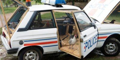 Hace tres años el mismo artista decidió volver una patrulla vieja en un granero. Foto:benedettobufalino.com