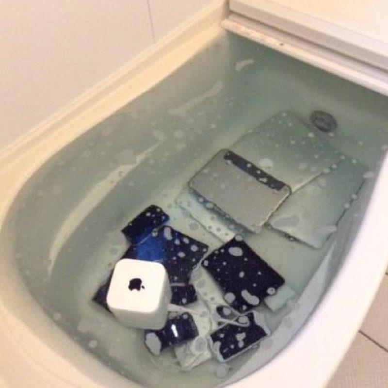 Sencillamente los metió a la bañera. Foto:vía Twitter