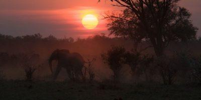 1. Botsuana. Este país africano ofrece icónicos paisajes, además de una espectacular fauna. Entre los destinos para visitar se encuentra el delta del Okavango y el desierto de Kalahari. Foto:Vía Flickr