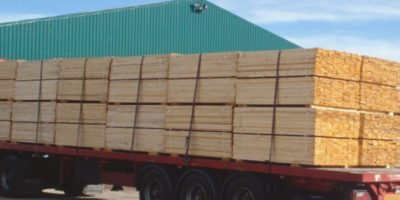 Apresan a 2 que iban en camión cargado de madera supuestamente robada