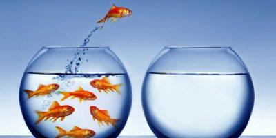 El principio de año es ideal para hacer cambios positivos para tu desarrollo laboral