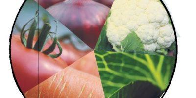 Conoce la dieta de los colores: ¡Ultra vitamínica y saludable!
