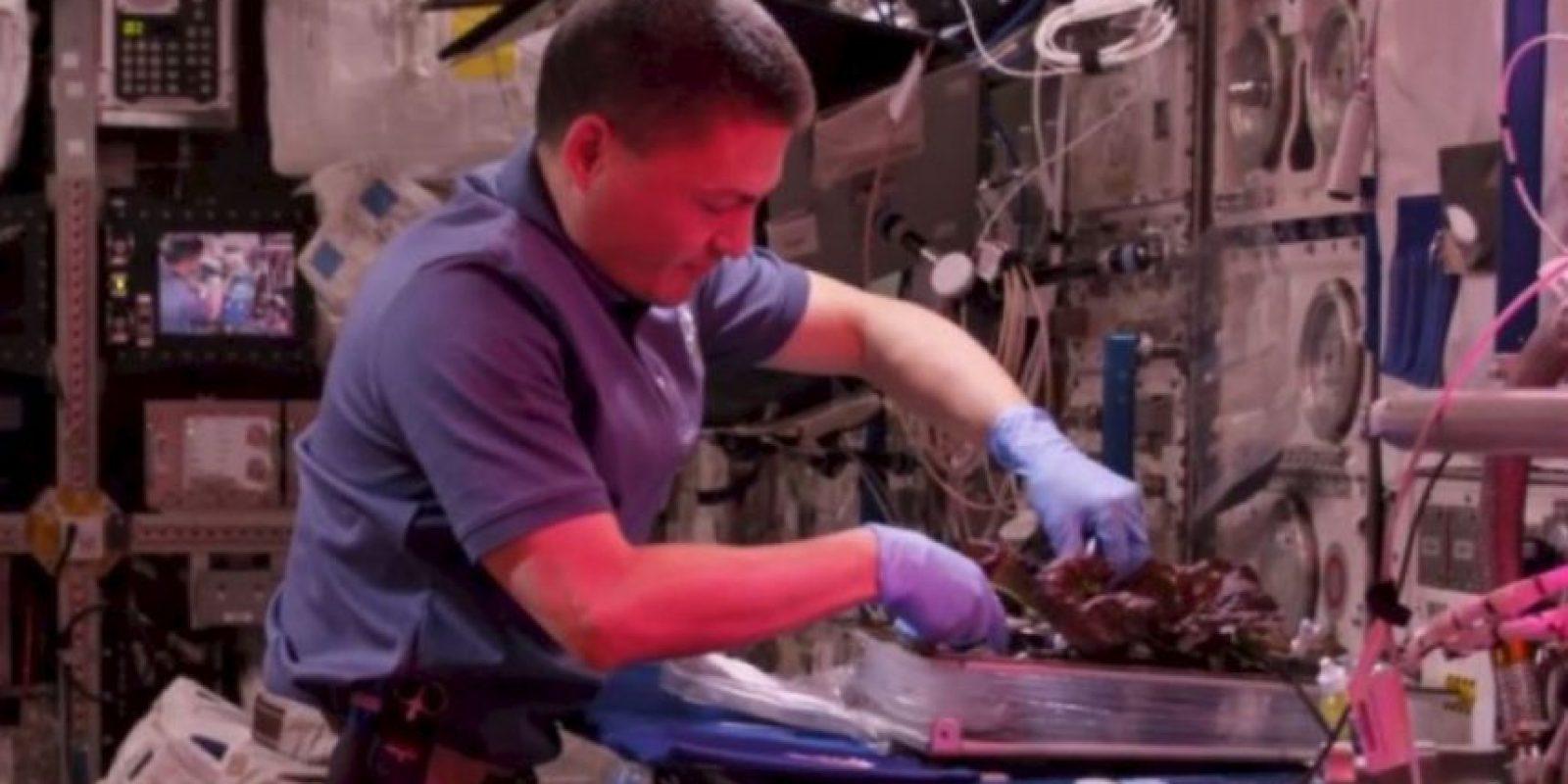Algo que ya sucede en la Estación Espacial Internacional Foto:NASA