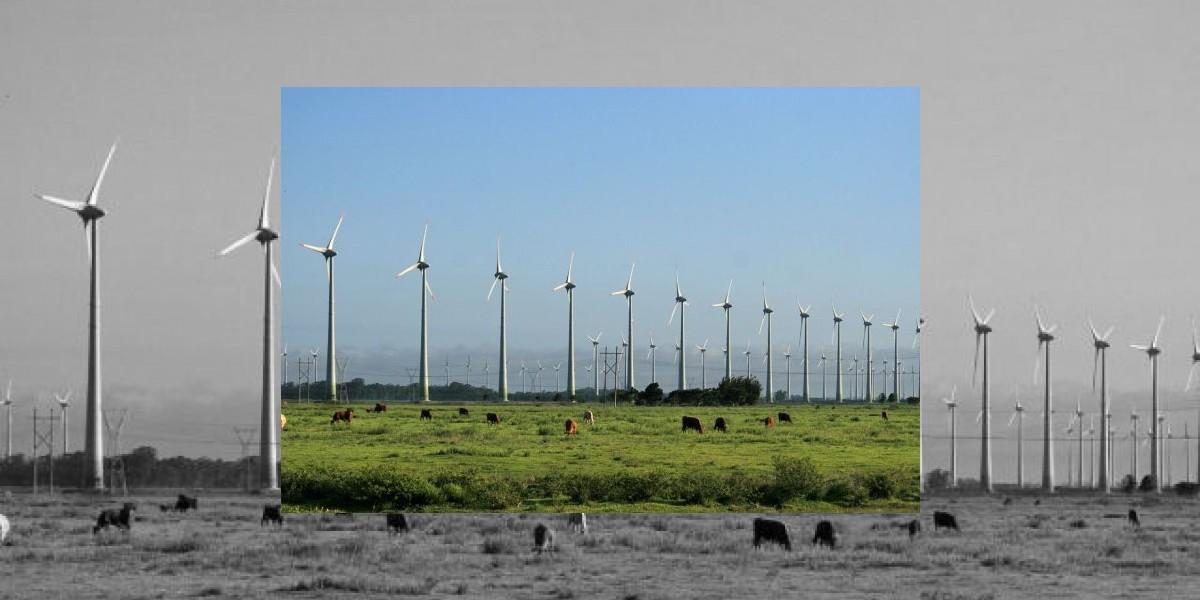 Llega al Palacio el conflicto por las energías renovables