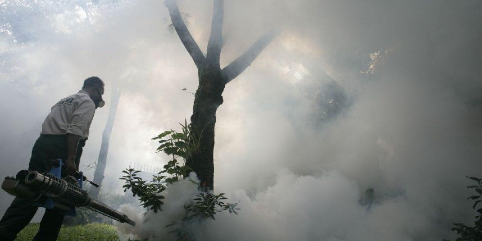 El Gobierno emprendió acciones para prevenir y mitigar, que incluyen la fumigación. / Roberto Guzmán