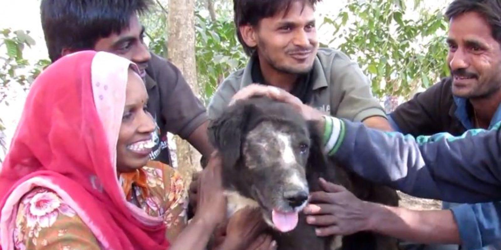 El equipo lo logró. Foto:vía Facebook/Animal Aid Unlimited