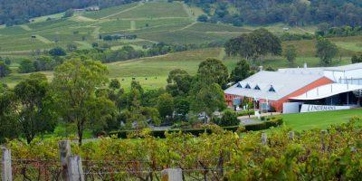 La bodega Lindeman´s, establecida en Hunter Valley en 1843, es una de las más icónicas y prestigiosas de Australia Foto:Fuente Externa