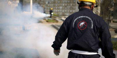 De acuerdo con Organización Mundial de la Salud, el periodo de incubación de la enfermedad por el virus Zika no está claro. Foto:AP