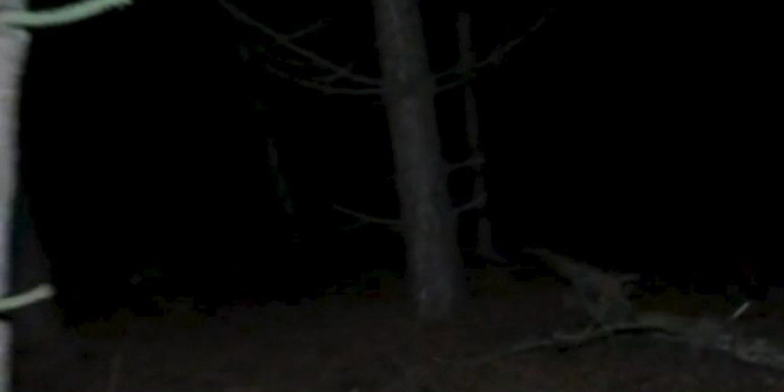 """8. El grupo de investigadores de """"Haunted Finders TV"""" asegura haber capturado una imagen de video donde se observa la presencia de """"un ente extraño"""". Foto:Via Hunted Finders"""