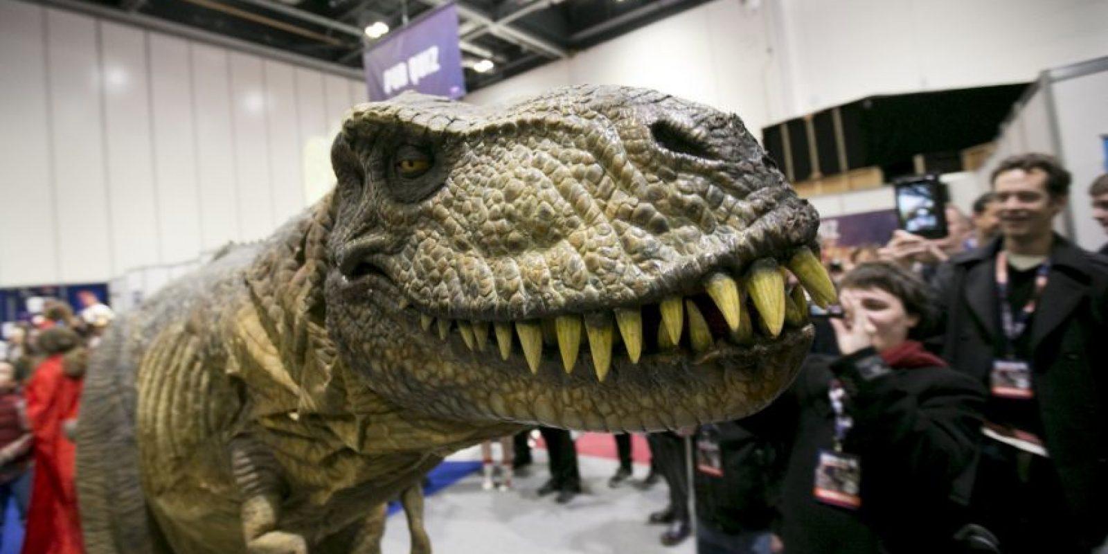 Tyrannosaurus rex Foto:Getty Images
