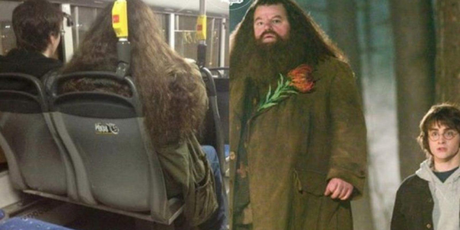 Harry y Hagrid. Foto:vía Facebook/ Parecidos de Bondis