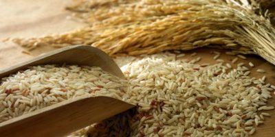 Comisión Nacional Arrocera dice hay suficiente arroz hasta la próxima cosecha