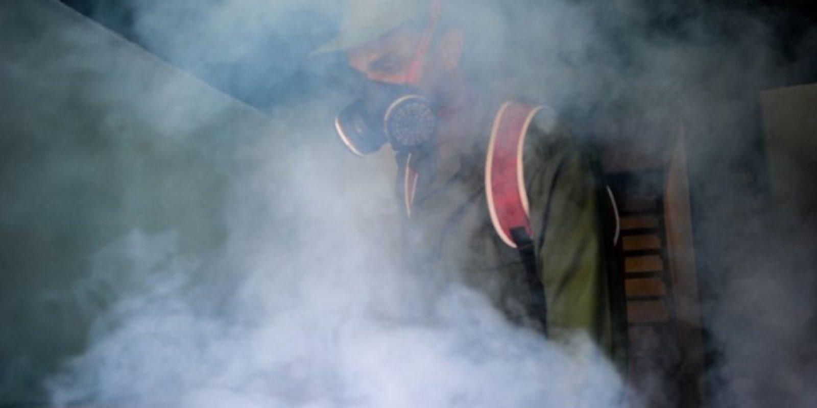 Se ha ligado a casos de microcefalia. Foto:AFP