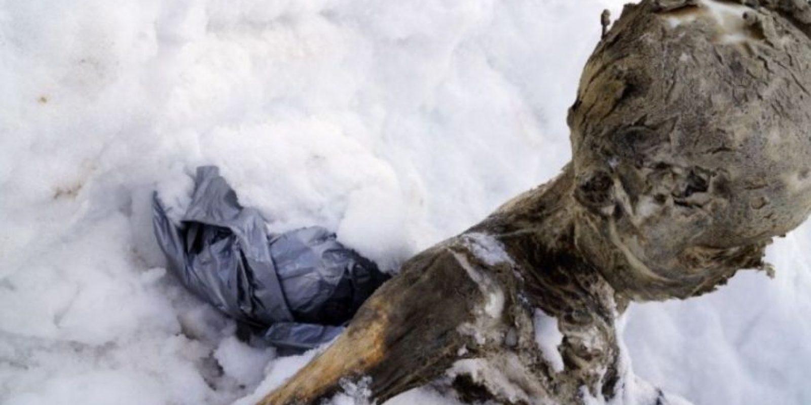 – Existen procesos de momificación naturales y artificiales. Los primeros pueden ocurrir en diferentes contextos ya que también se pueden hallar en zonas secas. Foto:AFP