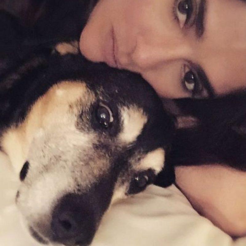Así es la relación de Salma Hayek con sus mascotas y otros animales Foto:Vía Instagram/@salmahayek