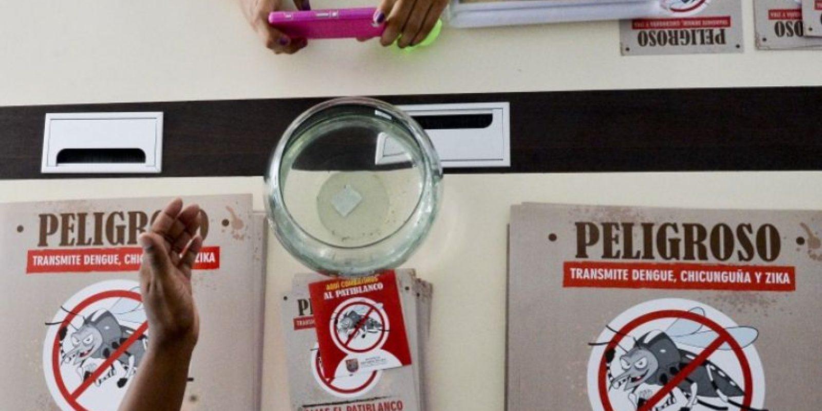 El virus Zika ha puesto en alerta a la comunidad médica internacional Foto:AFP