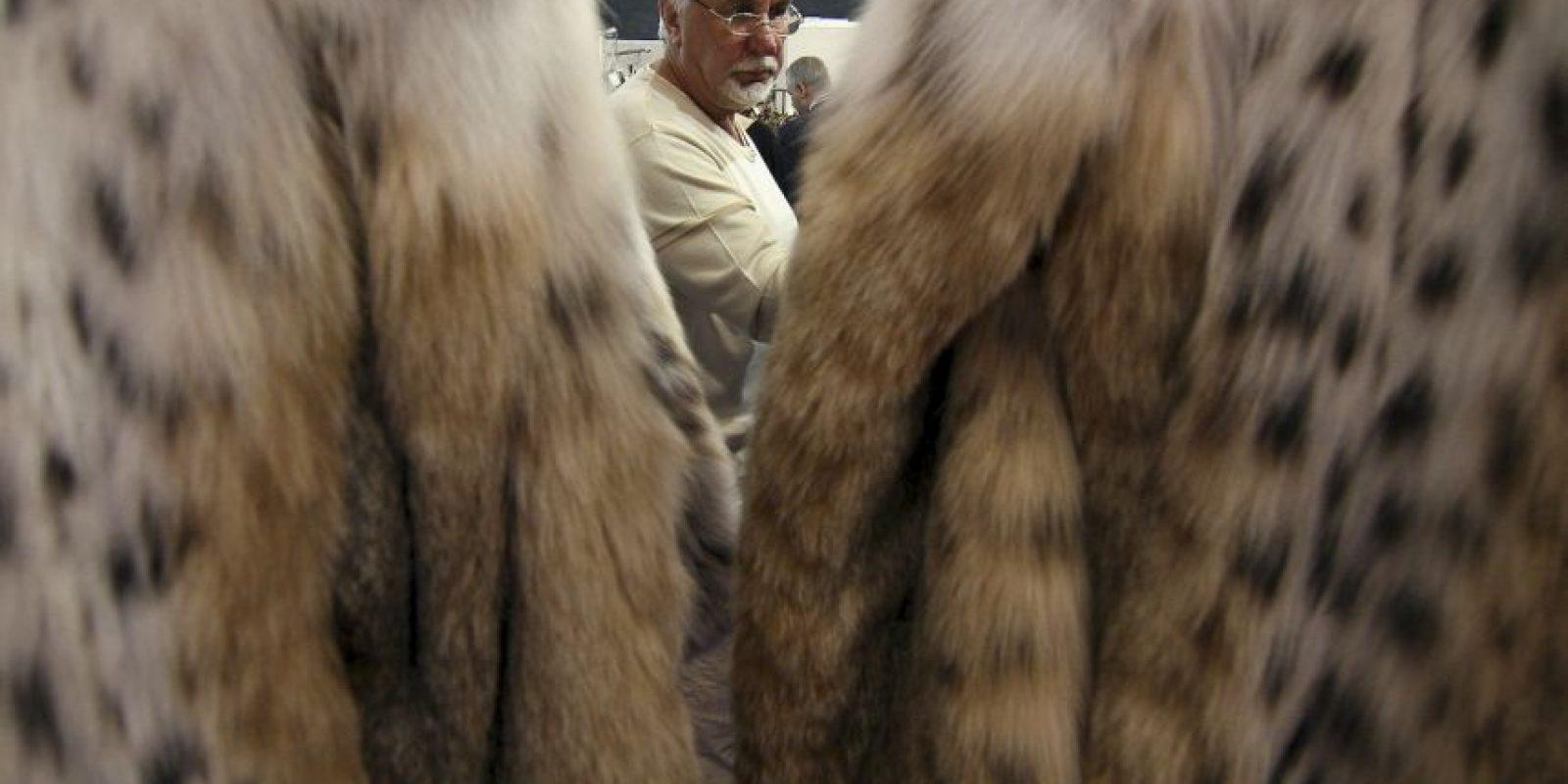 Fue acusada de usar ropa de animales despellejados vivos. Foto:Getty Images