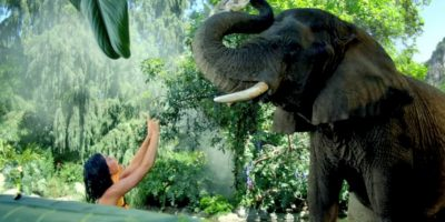 """Luego del lanzamiento de su video """"Roar"""", la organización """"Peta"""" criticó algunas imágenes donde Katy se encontraba rodeada de animales exóticos. Foto:Katy Perry VEVO"""