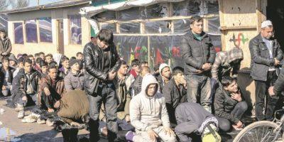 """Migrantes: """"bendición"""" para una vieja Europa"""