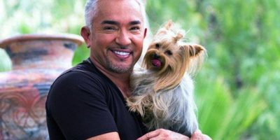 Ha dicho que quien más influyó en su decisión de convertirse en entrenador de perros fue su abuelo Foto:Vía facebook.com/cesar.millan