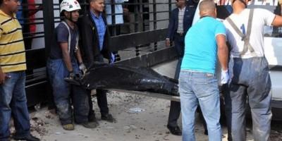 Apresan a cinco personas por muerte de dos prestamistas en Gazcue