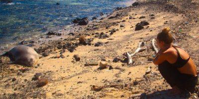 Kamilo Beach, Hawaii. Mucho del plástico que flota en el Pacífico termina en esta playa. Foto:vía www.instagram.com/jeremymckane/