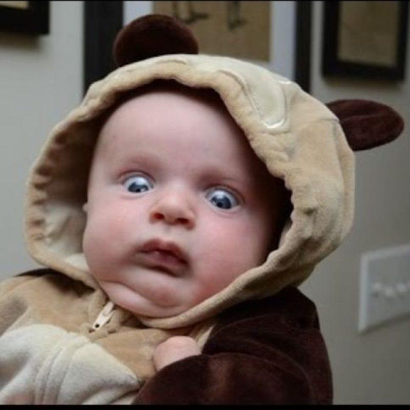 Los bebés suelen ser del agrado de Internet Foto:Twitter