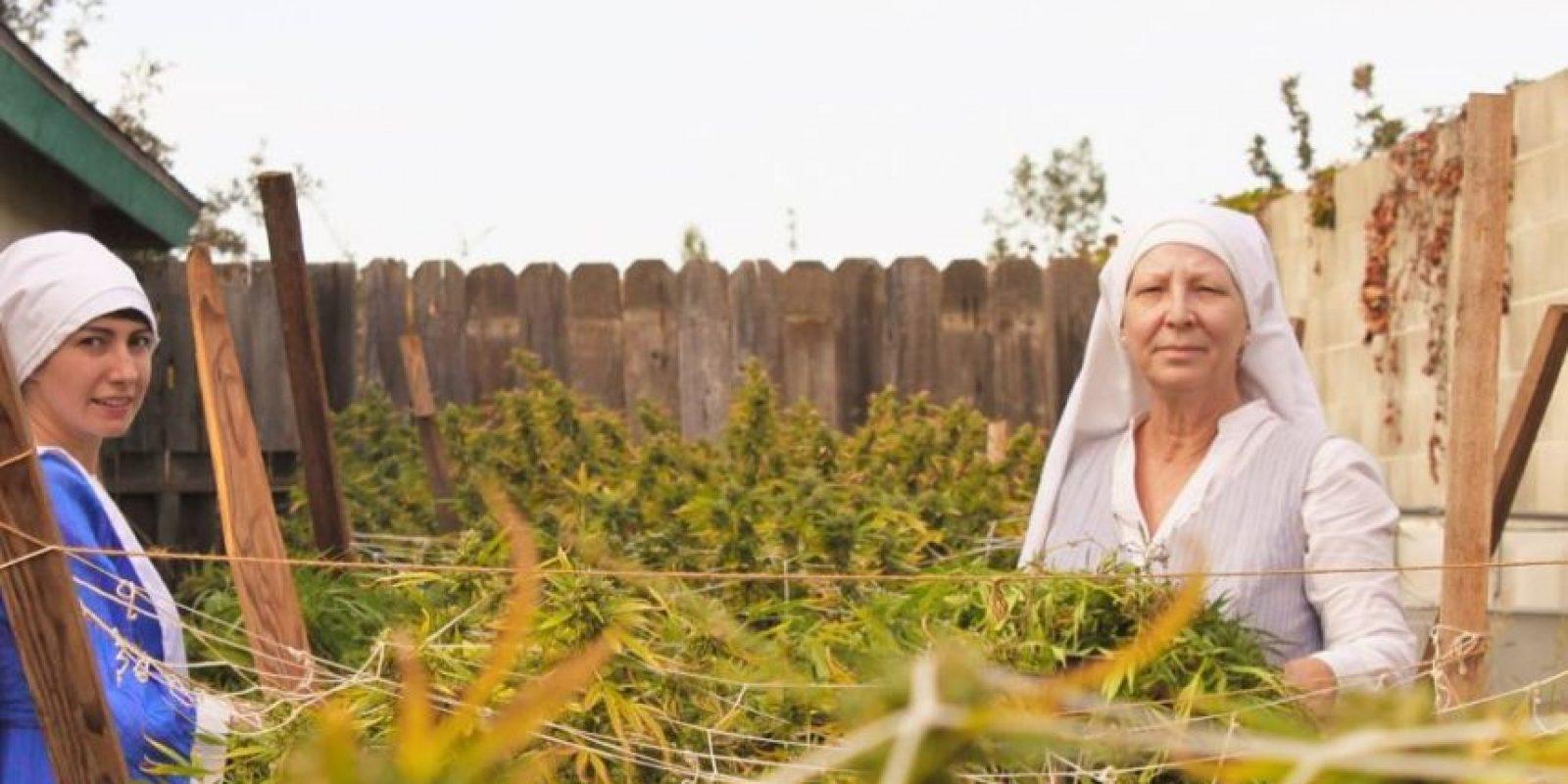 El uso de la marihuana puede tener una amplia gama de efectos en la salud física y mental. Foto:instagram.com/sistersofthevalley/