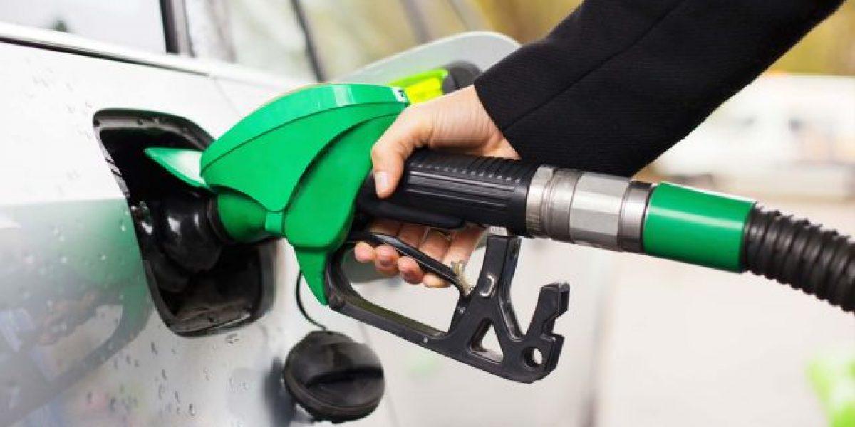 MIC congela los precios de los combustibles